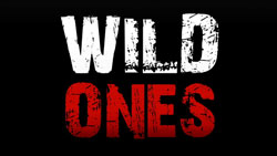Wild Ones on AWE