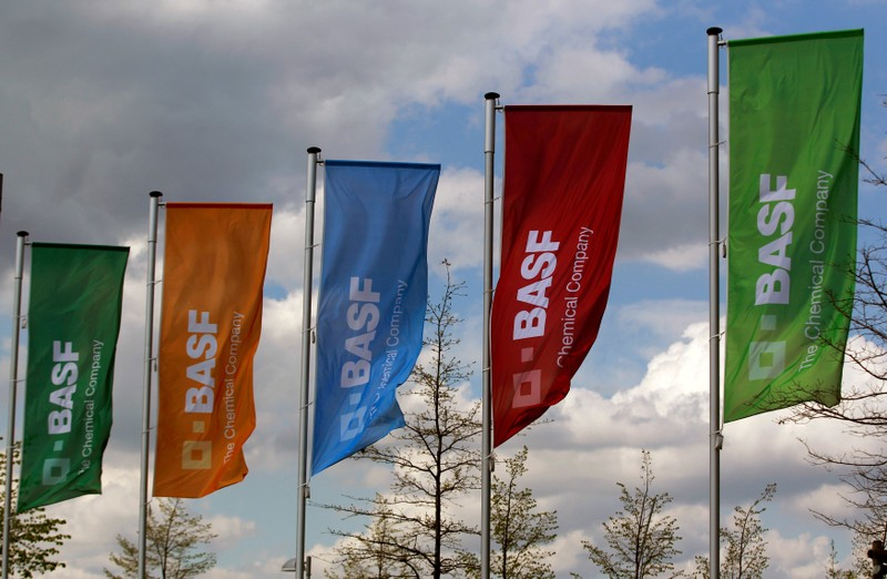 FILE PHOTO: Flags of the German chemical company BASF are pictured in Monheim