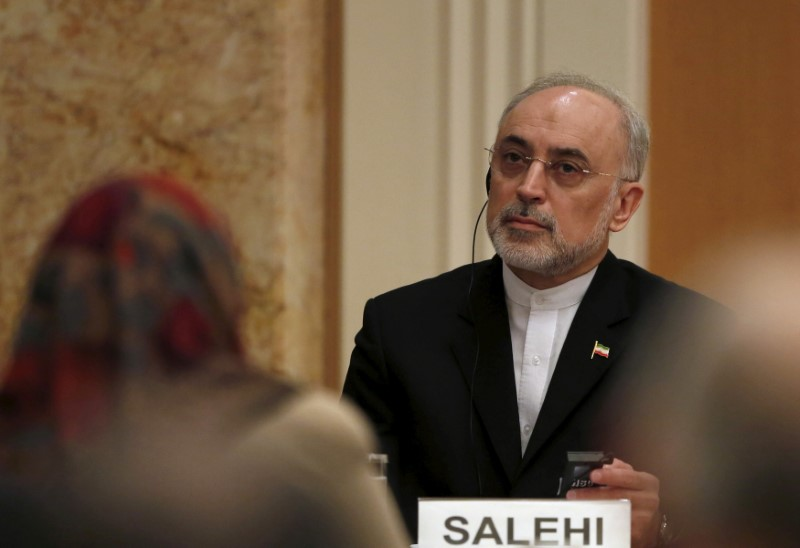 FILE PHOTO: Iran's head of the country's Atomic Energy Organization, Salehi, attends during a seminar at the Japan Institute of International Affairs in Tokyo