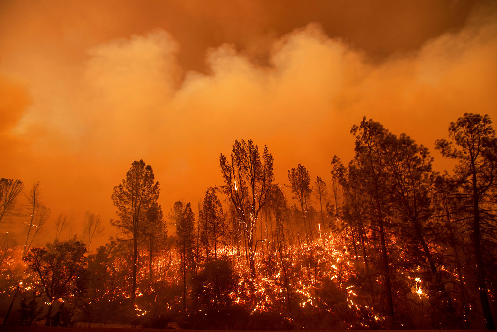 Deadly Northern California wildfire almost  doubles in size overnight
