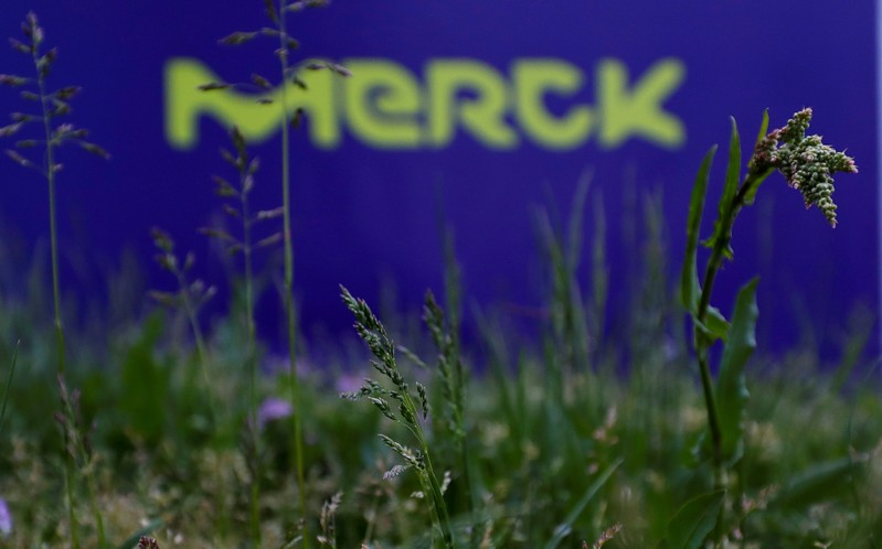 FILE PHOTO: The logo of German pharmaceuticals company Merck is seen at the company's headquarters in Darmstadt