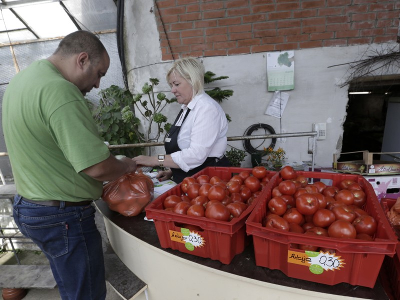 People shop for tomatoes in the family owned farm