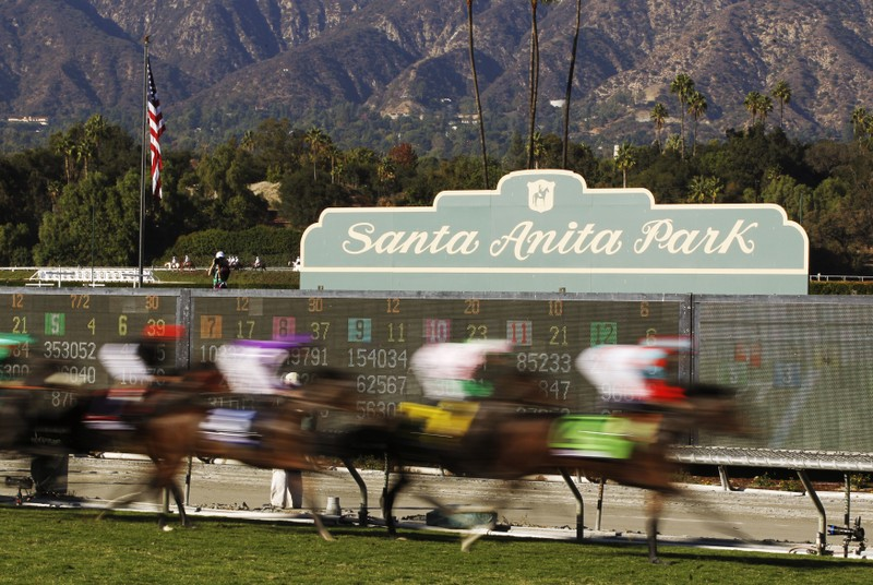 FILE PHOTO: Horses race during the running of the Breeders' Cup Turf thoroughbred horse race in Arcadia