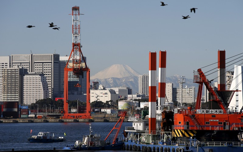 FILE PHOTO - Birds fly in front of Mt. Fuji and a crane at a port in Tokyo