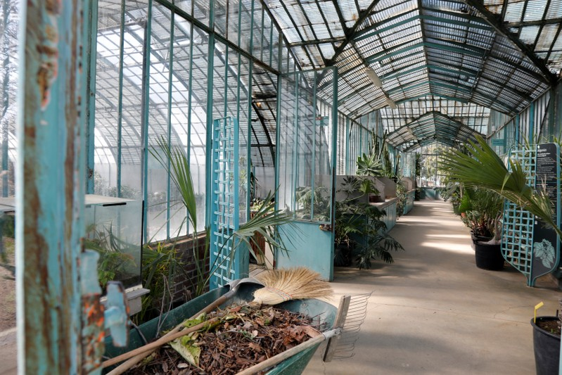 Inside view of a greenhouse at the botanical garden