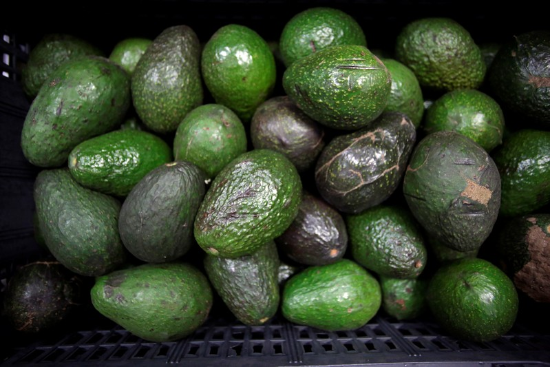 Avocados are on display for sale at the wholesale market