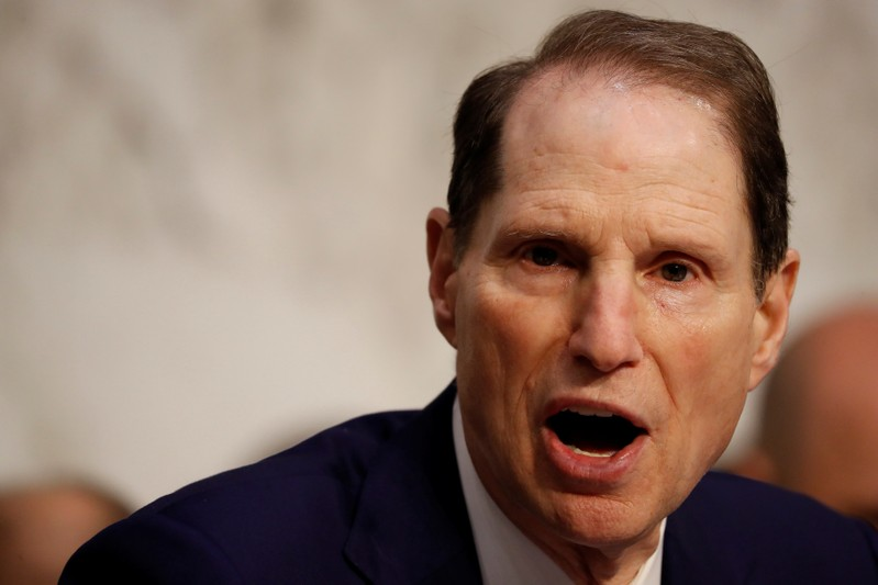 FILE PHOTO: Sen. Ron Wyden (D-OR) speaks during a markup on the