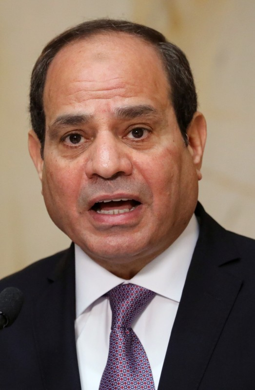 Egypt President Abdel Fattah al-Sisi is seen during a news conference at the Presidential Palace in Abidjan