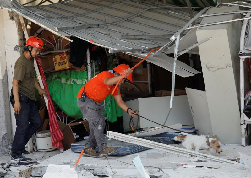 A rescuer assists a search dog as they try to reach survivors at a collapsed four-storey building in Porac town