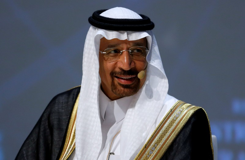 FILE PHOTO: Saudi Arabia's Energy Minister Khalid al-Falih talks during the 23rd World Energy Congress in Istanbul