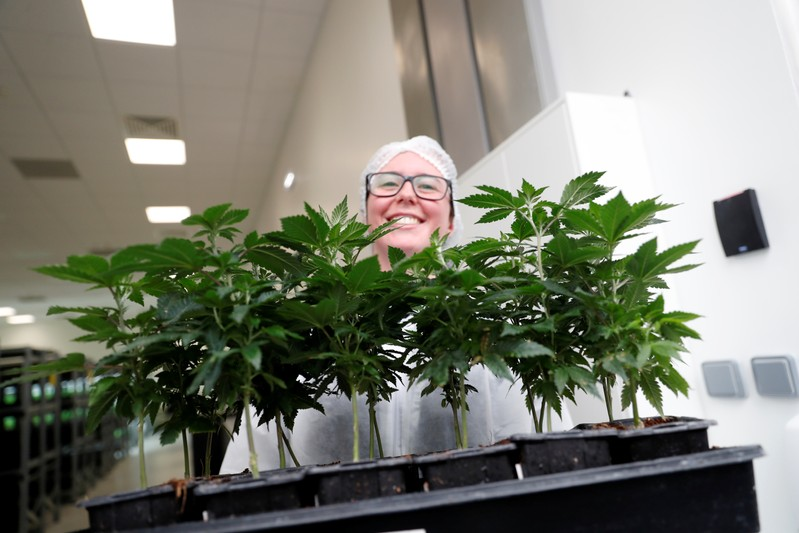 Worker smiles as she shows cannabis plants at the Tilray factory in Cantanhede