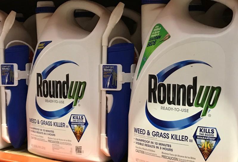 FILE PHOTO - Monsanto Co's Roundup shown for sale in California