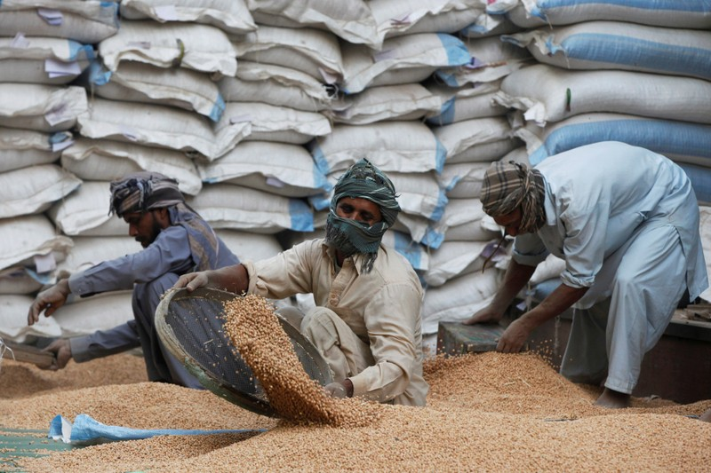 FILE PHOTO: Laborers clean a pile of dry chickpea outside a warehouse in Karachi, Pakistan