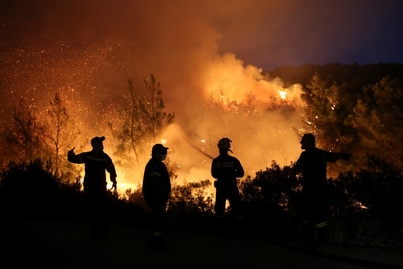 Firefighters try to extinguish a wildfire burning near the village of Makrimalli on the island of Evia
