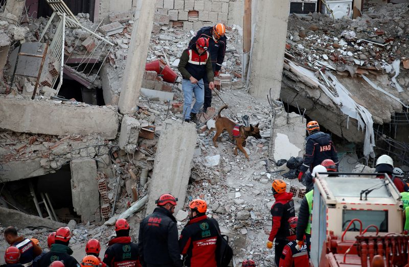 Quake kills 35 in Turkey