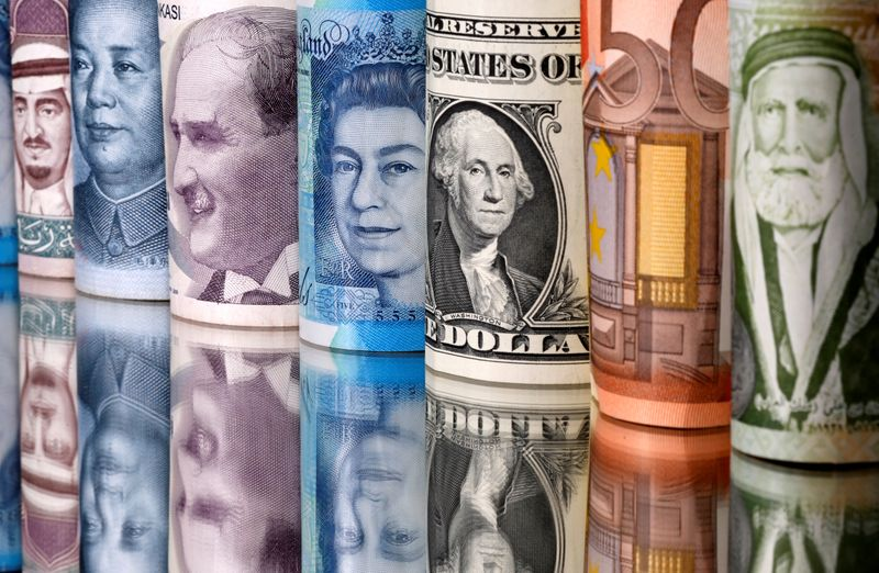 FILE PHOTO:  Saudi riyal, yuan, Turkish lira, pound, U.S. dollar, euro and Jordanian dinar banknotes are seen in this illustration