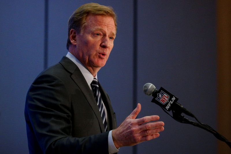 NFL commissioner Roger Goodell speaks during a news conference following the NFL owners autumn meeting in New York City