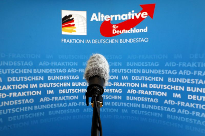 FILE PHOTO: A microphone stands in front of an AfD logo on the press wall of the German Bundestag in Berlin