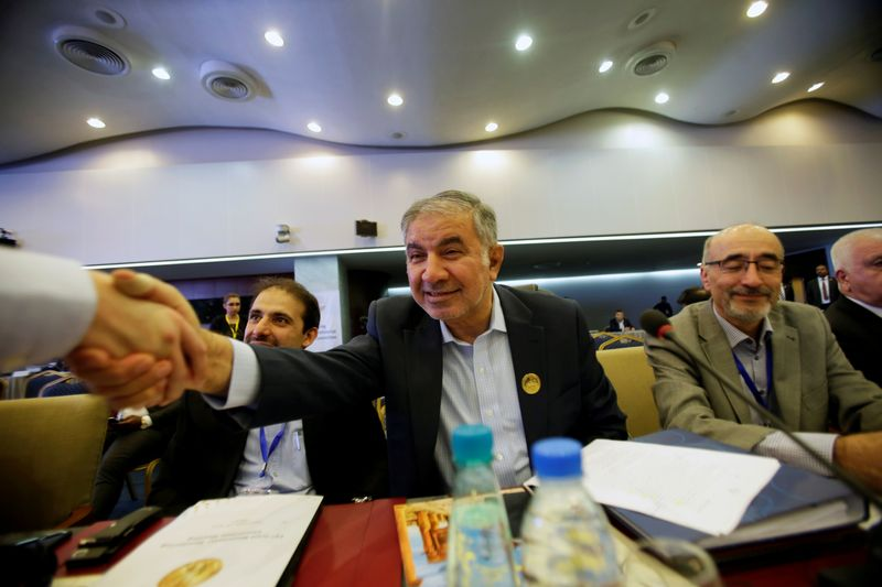 FILE PHOTO: Iran's OPEC governor Hossein Kazempour Ardebili  is greeted at the OPEC Ministerial Monitoring Committee in Algiers