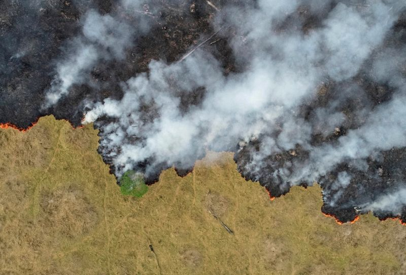 FILE PHOTO: Fires in the Amazon: a barrier to climate change up in smoke