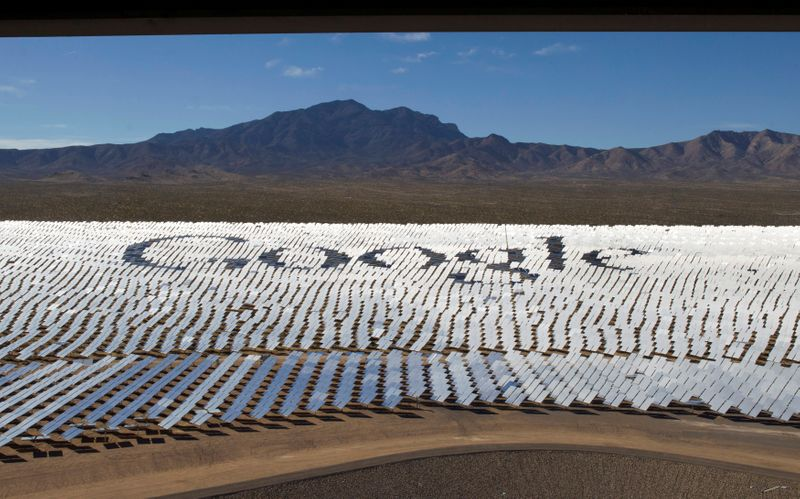 FILE PHOTO: The Google logo is spelled out in heliostats during a tour of the Ivanpah Solar Electric Generating System in the Mojave Desert near the California-Nevada border