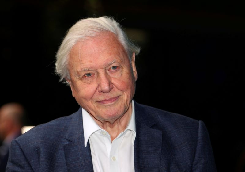 FILE PHOTO: Broadcaster and film maker David Attenborough attends the premiere of Blue Planet II at the British Film Institute in London