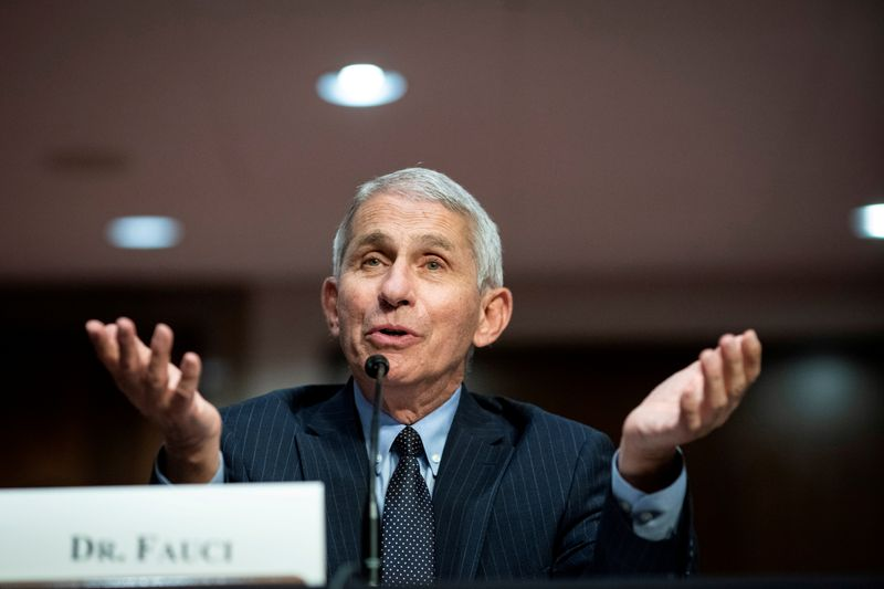Fauci Says Vaccine Verdict Due by Early December