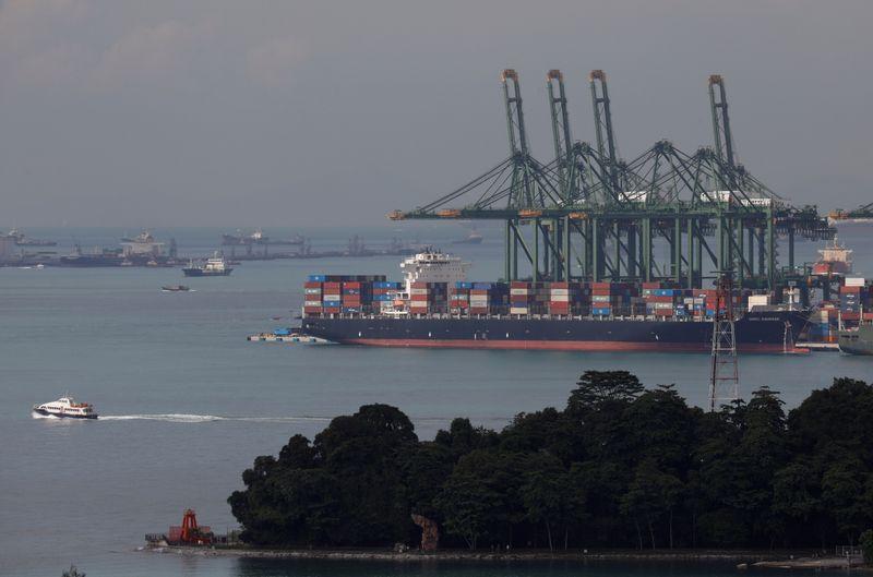FILE PHOTO: A container ship docks at Pasir Panjang terminal in Singapore