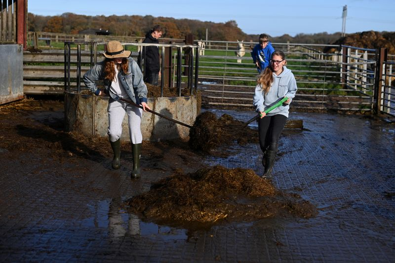 Charlie Hooper and Emily Trice muck out the cows during a visit to Future Roots in Sherborne